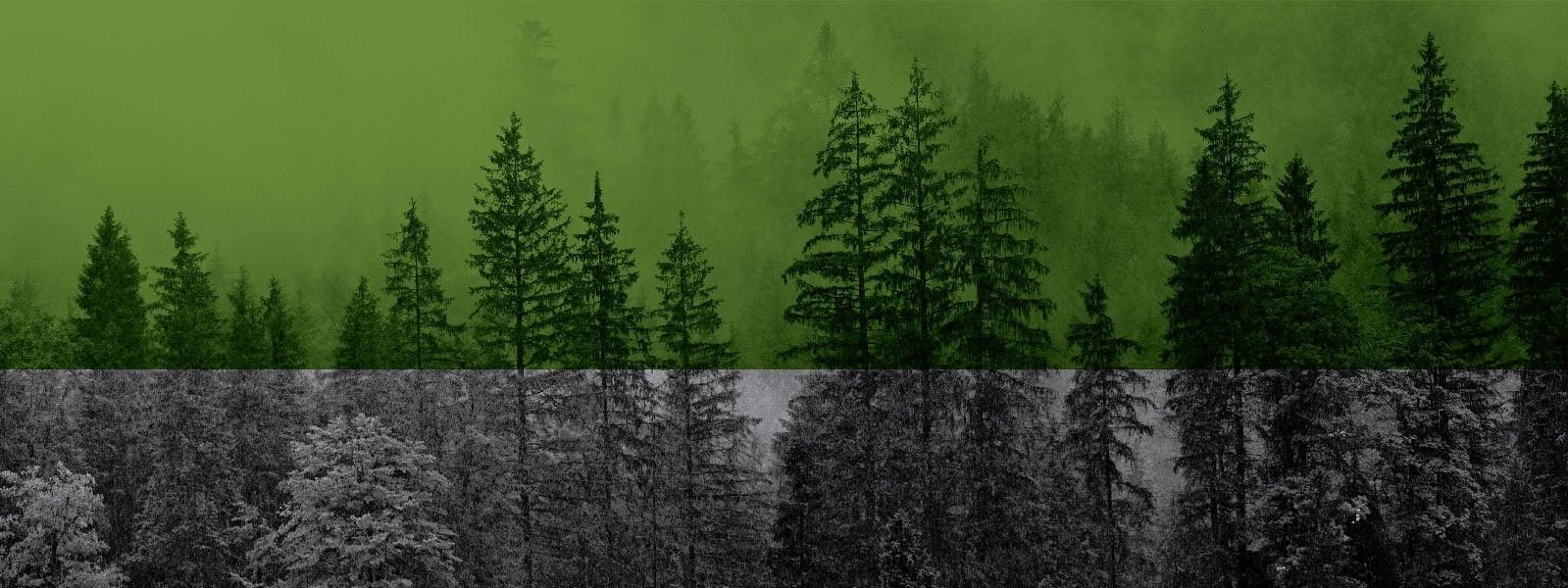 Eco Mission Banner